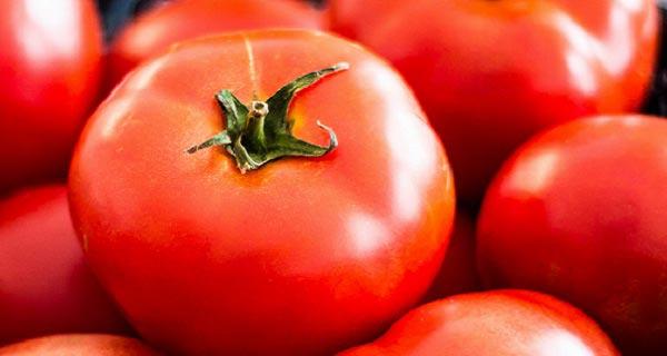 خواص گوجه فرنگی برای پوست ، خواص گوجه فرنگی در لاغری و بدنسازی ، مضرات گوجه فرنگی ، ',]i tvk'd