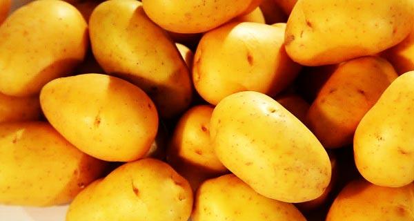 خواص سیب زمینی ، خواص مفید سیب زمینی آب پز, سرخ کرده و کبابی برای پوست و مو و بدنسازی ، مضرات سیب زمینی