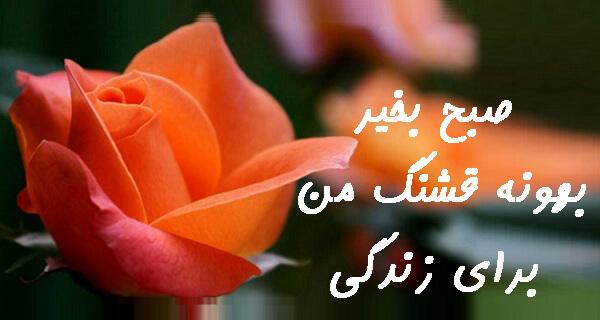 صبح بخیر عاشقانه برای همسر ، اس ام اس و متن صبح بخیر عارفانه به همسر ، عکس نوشته صبح بخیر برای همسر