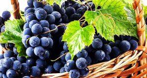 تعبیر خواب انگور ، تعبیر دیدن انگور یاقوتی ، تعبیر خواب انگور قرمز ، سیاه و سفید ، تعبیر دادن و گرفتن انگور از مرده