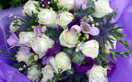 عکس سبد گل زیبا با گل آبی روشن و سفید برای پروفایل