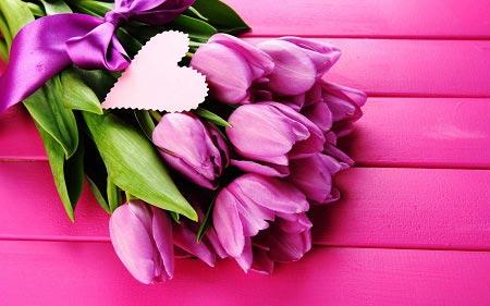 عکس شاخه گل زیبا برای پروفایل ، شاخه گل زیبا ویژه پروفایل