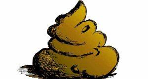 دیدن مدفوع در خواب ، تعبیر خواب مدفوع پسربچه و دختربچه و نوزاد، تعبیر خواب خوردن مدفوع انسان و همسر ، دیدن مدفوع در دهان و شستن ، tabir khab madfo