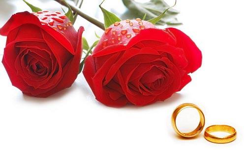 عکس 2 عدد گل رز قرمز با دو عدد حلقه نامزدی