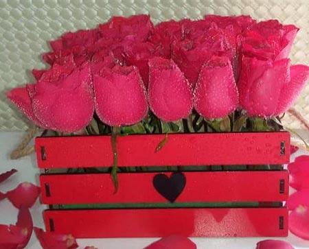 عکس گل رز قرمز قلب دار
