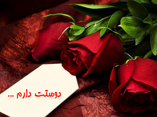 عکس نوشته زیبا گل رز دوستت دارم برای پروفایل