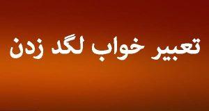 تعبیر خواب لگد زدن به شوهر و لگد خوردن از پدر و مادر + دوست دختر و پسر، tabire khab lagad zadan