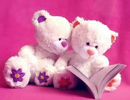 عکس های زیبا از عروسک خرس پاندا